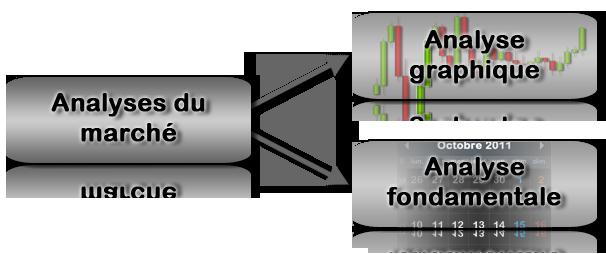 Analyse fondamentale forex
